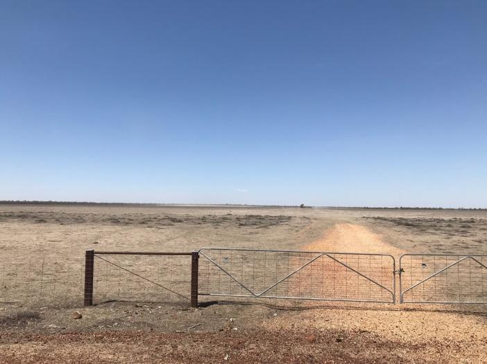 dusty paddock